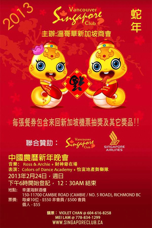 VSC_CNY-2013_Chinese